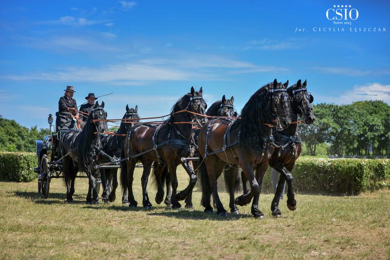 Pokaz koni fryzyjskich WS